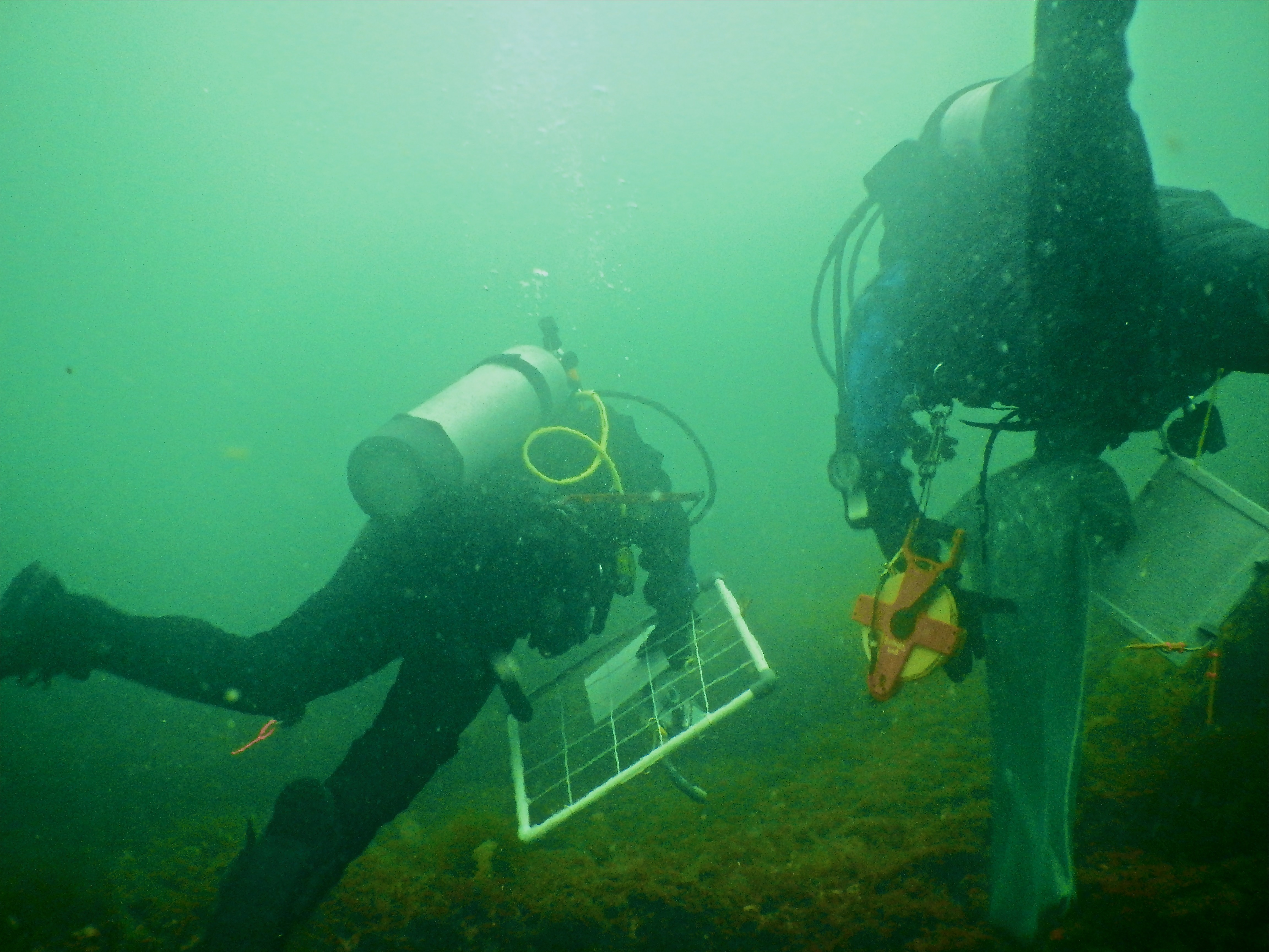 The Byrnes Lab Underwater Research Methods